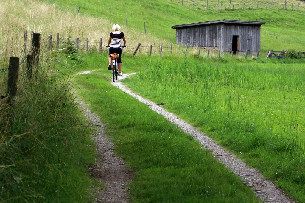 professional-cyclist-408357_1280